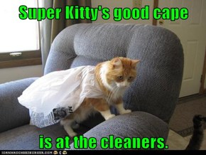 Super Kitty's good cape  is at the cleaners.