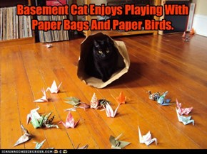 Basement Cat Enjoys Playing With Paper Bags And Paper Birds.