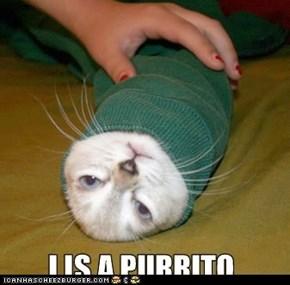 Its a burrito