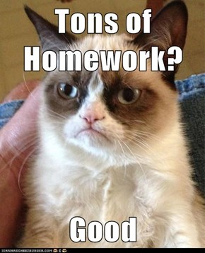 Tons of Homework?  Good