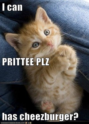 I can PRITTEE PLZ has cheezburger?