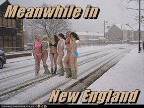 Meanwhile in                 New England