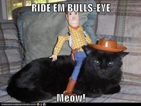 RIDE EM BULLS-EYE  Meow!