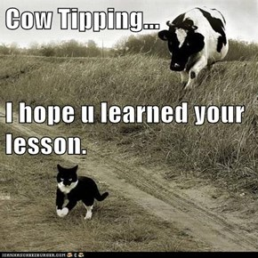 Cow Tipping... I hope u learned your lesson.