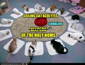 CEILING CAT ACOLYTES