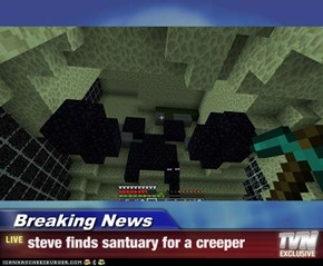 Breaking News - steve finds santuary for a creeper