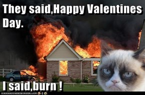 They said,Happy Valentines Day.  I said,burn !
