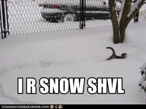 snow shovel cat