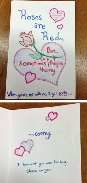 The Most Romantic Valentine Card You Will See This Year