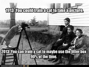 1913: You could train a cat to take a picture.