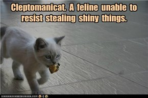 Cleptomanicat.  A  feline  unable  to resist  stealing  shiny  things.