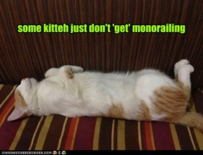 some kitteh just don't 'get' monorailing