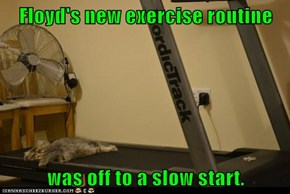 Floyd's new exercise routine  was off to a slow start.