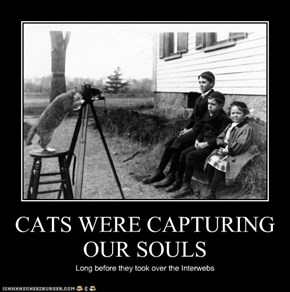 CATS WERE CAPTURING OUR SOULS