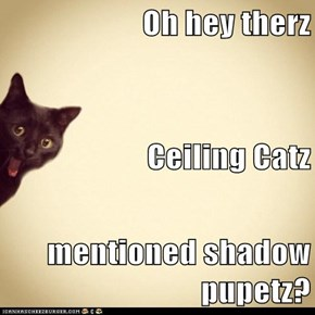 Oh hey therz Ceiling Catz mentioned shadow pupetz?