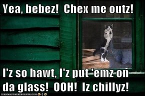 Yea, bebez!  Chex me outz!  I'z so hawt, I'z put 'emz on da glass!  OOH!  Iz chillyz!