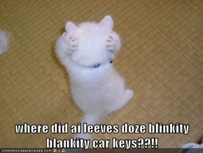 where did ai leeves doze blinkity blankity car keys??!!