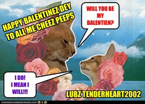 WILL YOU BE MY BALENTIEN?