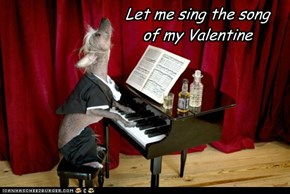 Let me sing the song of my Valentine