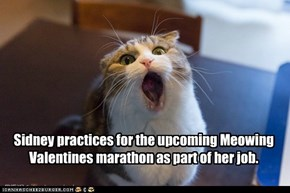 Sidney practices for the upcoming Meowing Valentines marathon as part of her job.