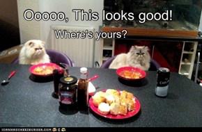 Mmmmm..... Human food!