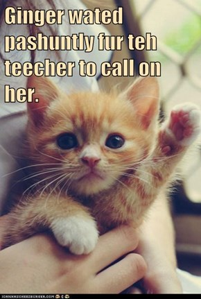 Ginger wated pashuntly fur teh teecher to call on her.