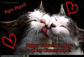 Happy Valentine's Day from MJKittyMom!!