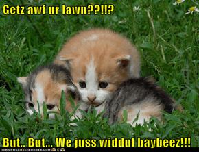 Getz awf ur lawn??!!?  But.. But... We juss widdul baybeez!!!