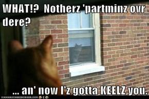 WHAT!?  Notherz 'partminz ovr dere?  ... an' now I'z gotta KEELZ you.