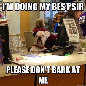 Please Don't Bark At Me