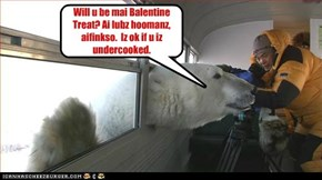 Will u be mai Balentine Treat? Ai lubz hoomanz, aifinkso.  Iz ok if u iz undercooked.