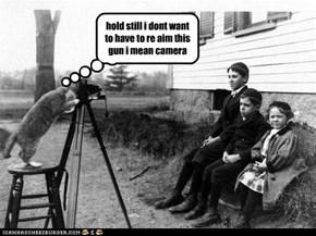 cats and guns bad idea