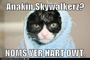 Anakin Skywalkerz?  NOMS YER HART OWT.