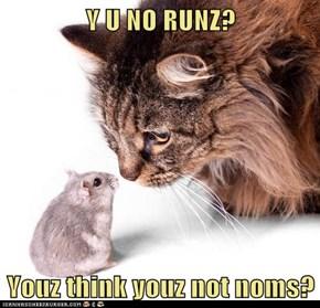 Y U NO RUNZ?  Youz think youz not noms?