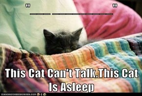 """___ _________""  This Cat Can't Talk.This Cat Is Asleep"