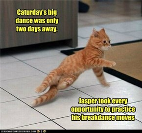 Caturday's big dance was only  two days away.