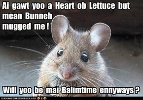 Ai  gawt  yoo  a  Heart  ob  Lettuce  but  mean  Bunneh   mugged  me !