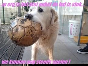 zo erg is het niet enkel de bal is stuk...  we kunnen nog steeds spelen !