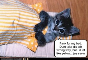 Fanx fur my bed. Dunt take dis teh wrong way, but I dunt like yellow... jus sayin
