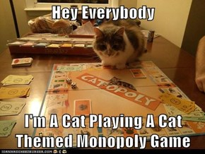 Hey Everybody  I'm A Cat Playing A Cat Themed Monopoly Game