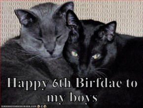 Happy 6th Birfdae to my boys