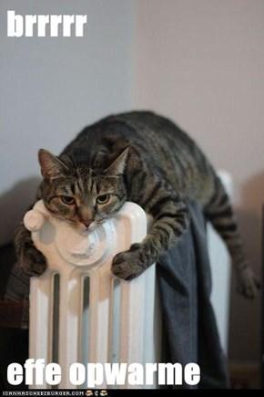 brrrrr  effe opwarme