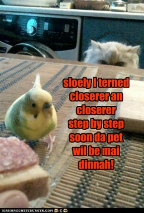 sloely I terned closerer an closerer step by step soon da pet wil be mai dinnah!