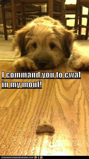 I command you to cwal in my mouf!