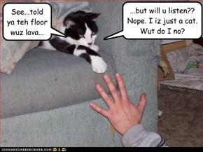 Meow Meow Lava Meow
