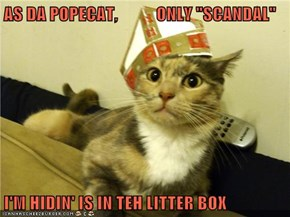 "AS DA POPECAT,           ONLY ""SCANDAL""  I'M HIDIN' IS IN TEH LITTER BOX"