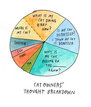 A Chart Depicting the Breakdown of a Cat Owner's Thought Process