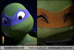 donatello (from tmnt) Totally Looks Like michelangelo (from tmnt)