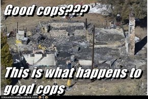 Good cops???  This is what happens to good cops