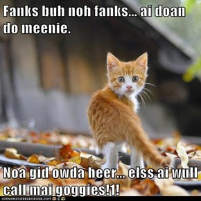 Fanks buh noh fanks... ai doan do meenie.  Noa gid owda heer... elss ai wull call mai goggies!1!
